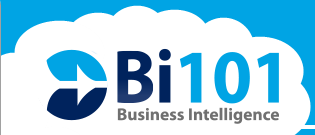 Business Intelligence 101